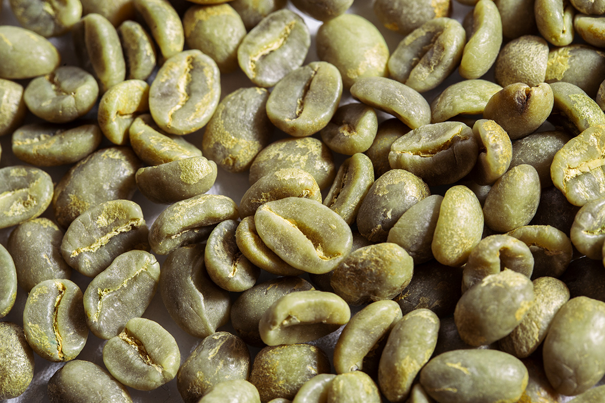 Mare Terra beans zoomed-in